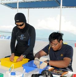 Penyelidik UKM - Pelihara Spesis Laut untuk Generasi akan datang