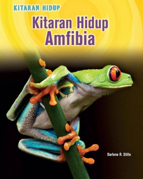 Kitaran Hidup Amfibia