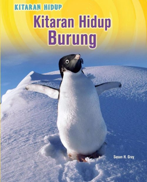 Kitaran Hidup Burung