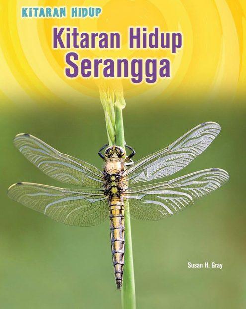 Kitaran Hidup Serangga